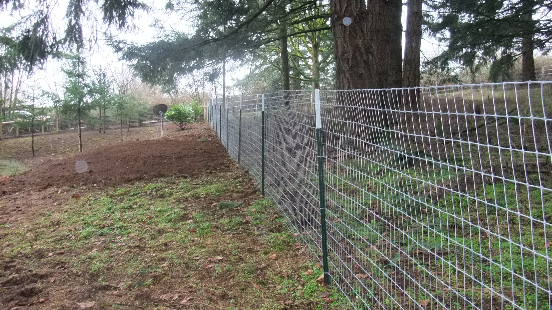 Fences – All About Decks