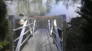Taulatin dock (7)